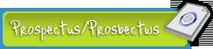 Ysgol Blaenau Prospectus